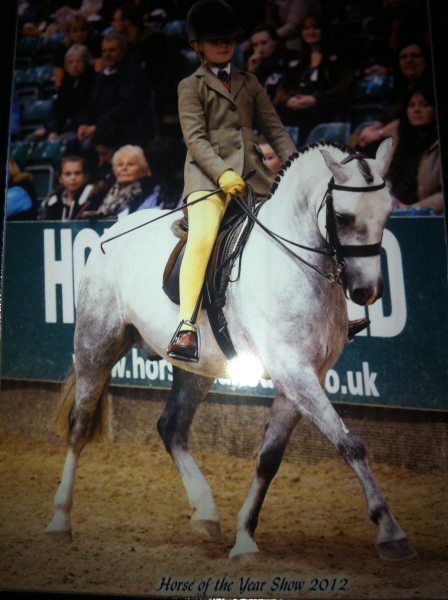 Horse of the Year Show 2013