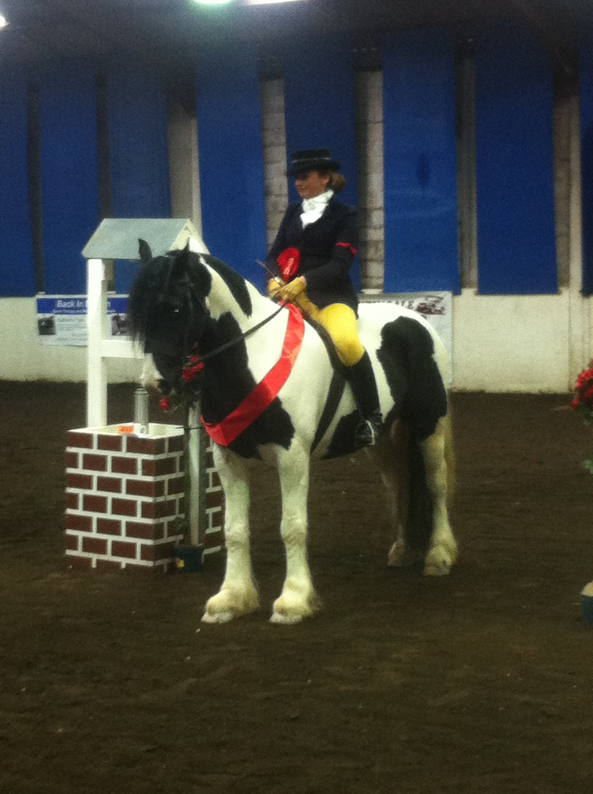 Kendal Taylor and Mickey Finn at Festival of Champions Valiants E C
